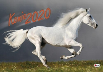 KALENDARZ 2020 KONIE KA2