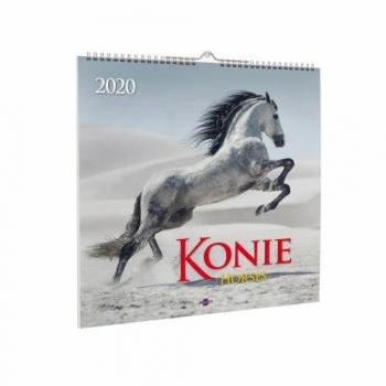 KALENDARZ AV 2020 KD-22 KONIE