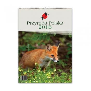KALENDARZ 2019 MAZURY/ PRZYRODA POLSKA
