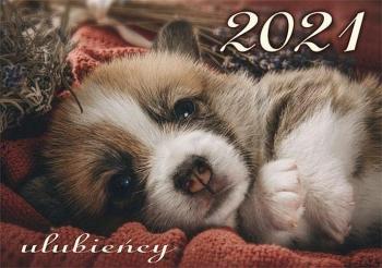 KALENDARZ 2021 ULUBIEŃCY KA4